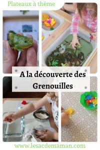 plateaux grenouilles
